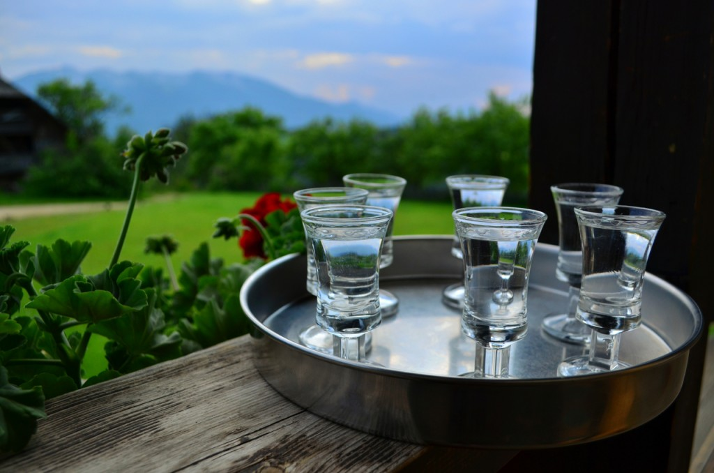 rakia; bicycle touring slovenia; two wheel travel; bicycle friendly hotel; bicycle touring