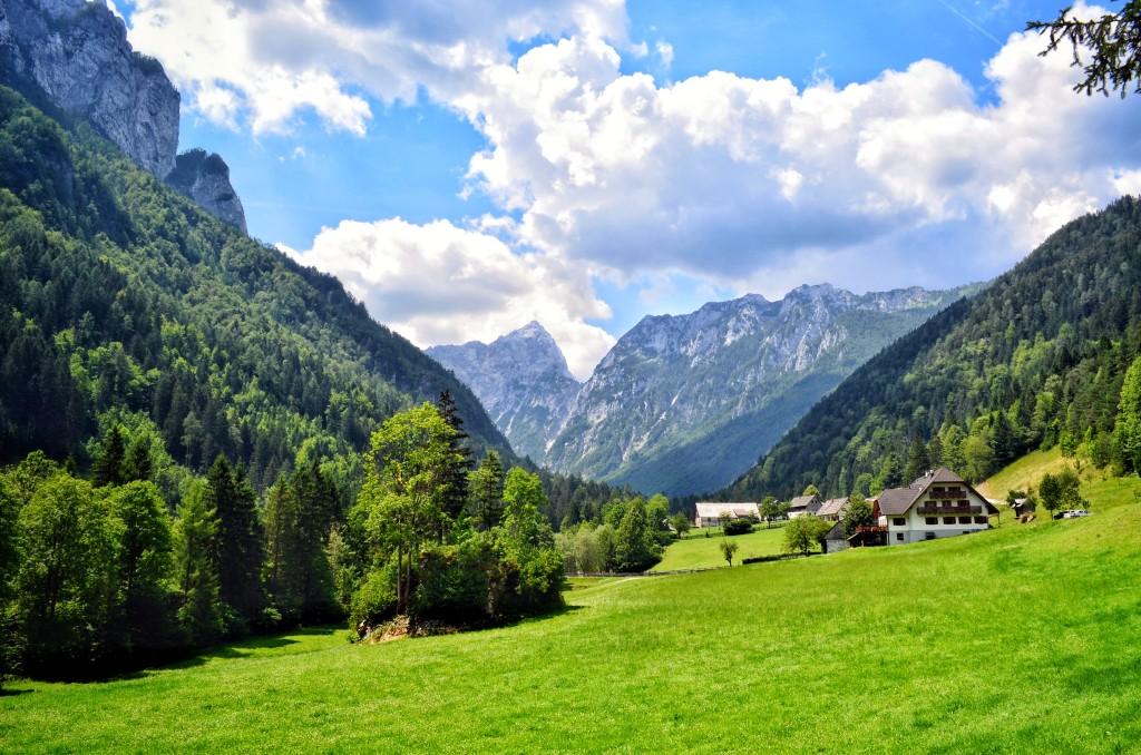 tourist farm Govc